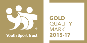 Quality Mark Logo 15-17 - Gold